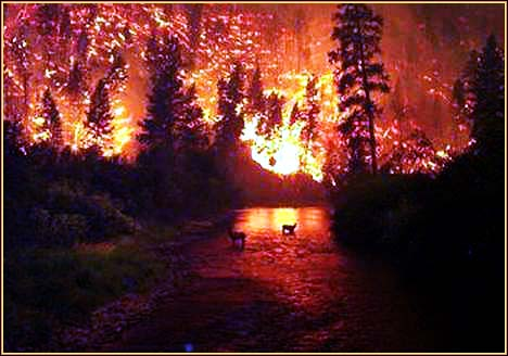 deer fire river