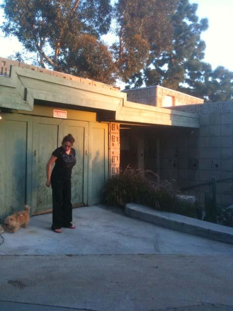 The Freeman House By Frank Lloyd Wright