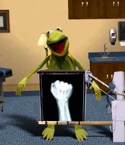 kermit the frog xray puppet hand puppeteer