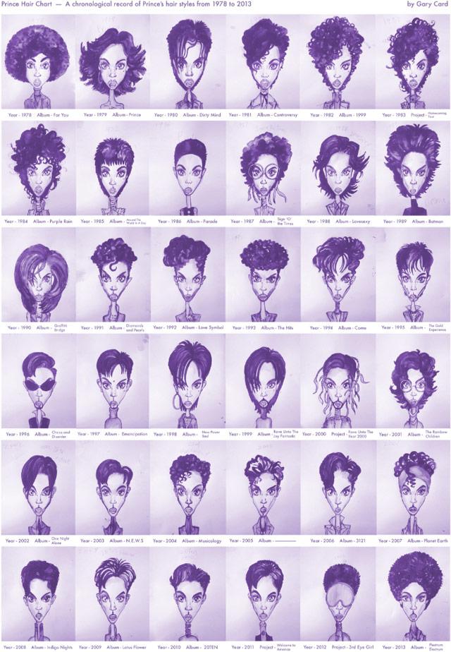 prince hairdo